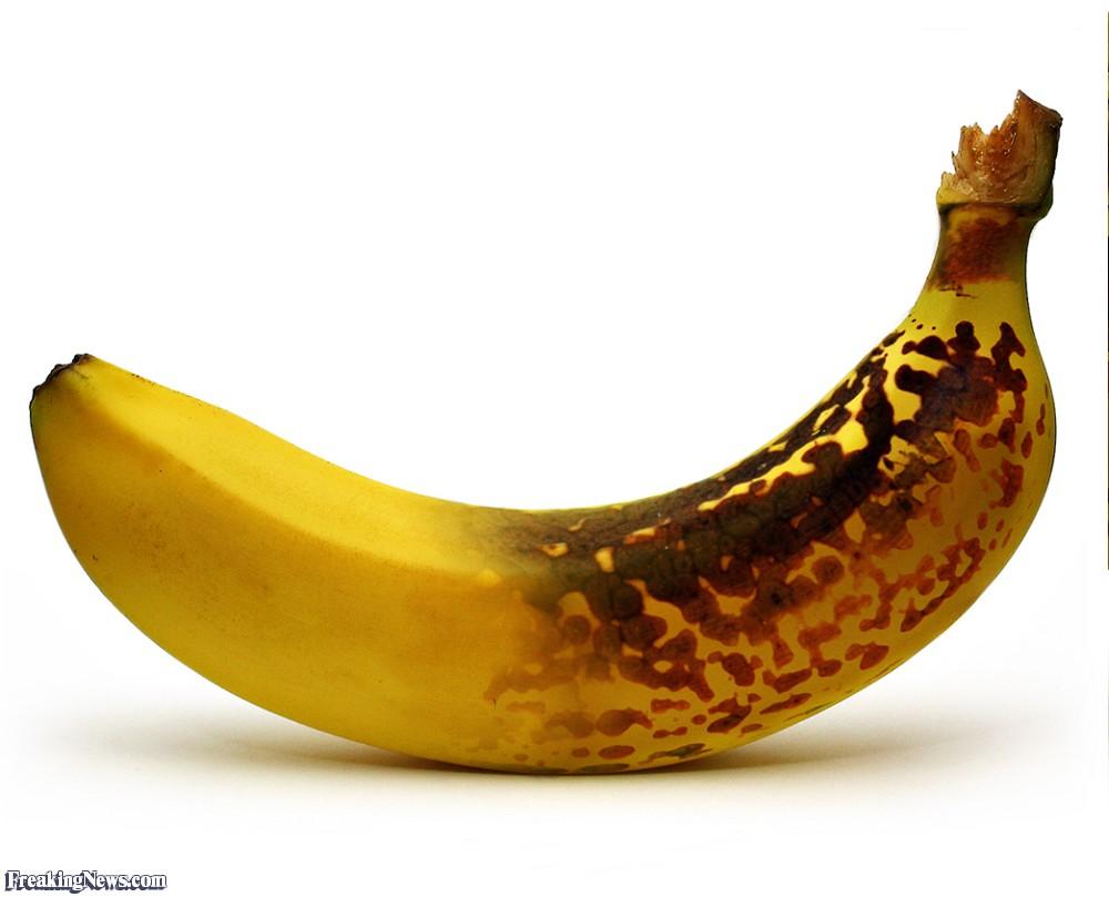 New-and-Old-Banana-34113